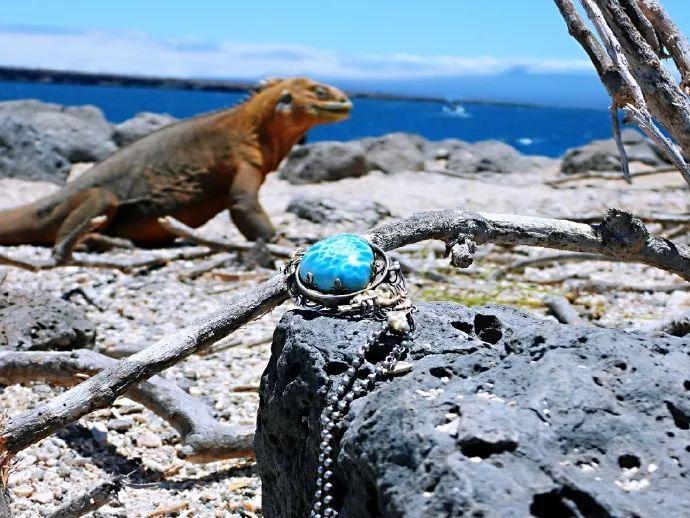 resize,m fill,h 518,w 690 - 海纹石为什么那么贵?你知道海纹石大概多少钱一克吗?